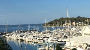 Nelson Bay Marina