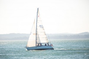 Passion at Port Stephens by  Andrew Richardson