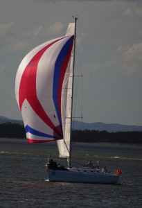 Last year our small symmetric spinnaker could not match it with the regatta competition