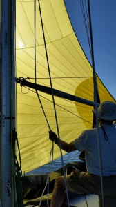 The speed generated by the spinnaker brought the apparent wind well forward