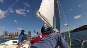 After tacking to round Goat island with the city of Sydney in the background