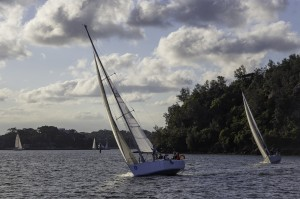 Passion X just  ahead of Soundtrack beating to Goat Island