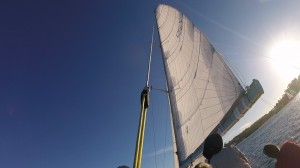 Mainsail shape best seen with the sun behind the sail