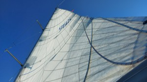 Monday a test sail after converting the back stay to a single 12:1 system